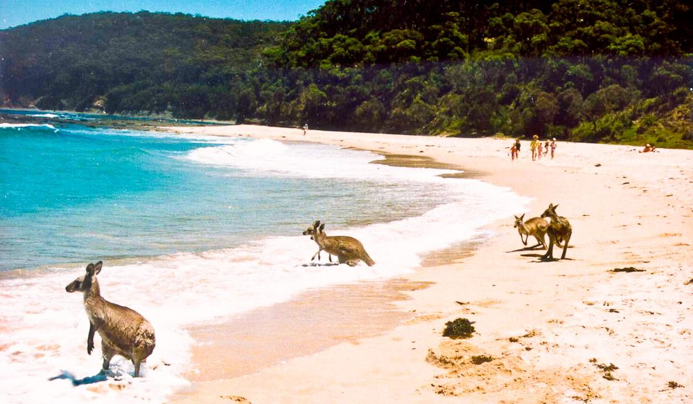 Knights Beach South Australia