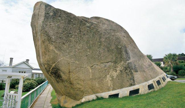 WATC albany dog rock