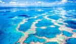 Aerial View of Hardy Reef.  Copyright Mark Gray