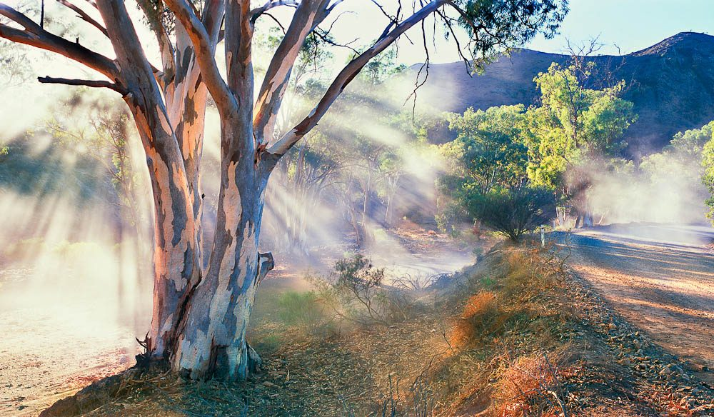 Best Time Of Year To Travel To Flinders Ranges