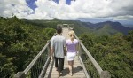 Dorrigo Skywalks always impress. Image by Tourism NSW