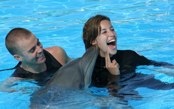 Win A Pet Porpoise Pool Dolphin Encounter