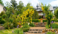 Delderfield B&B, Marysville, Victoria.