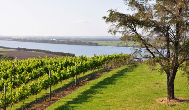 Gourmet-Food-Trails-Shoalhaven-gallery-5