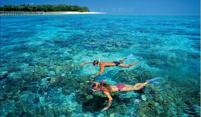 Green Island snorkellers