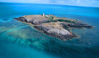 Torres-Strait-custom-fields