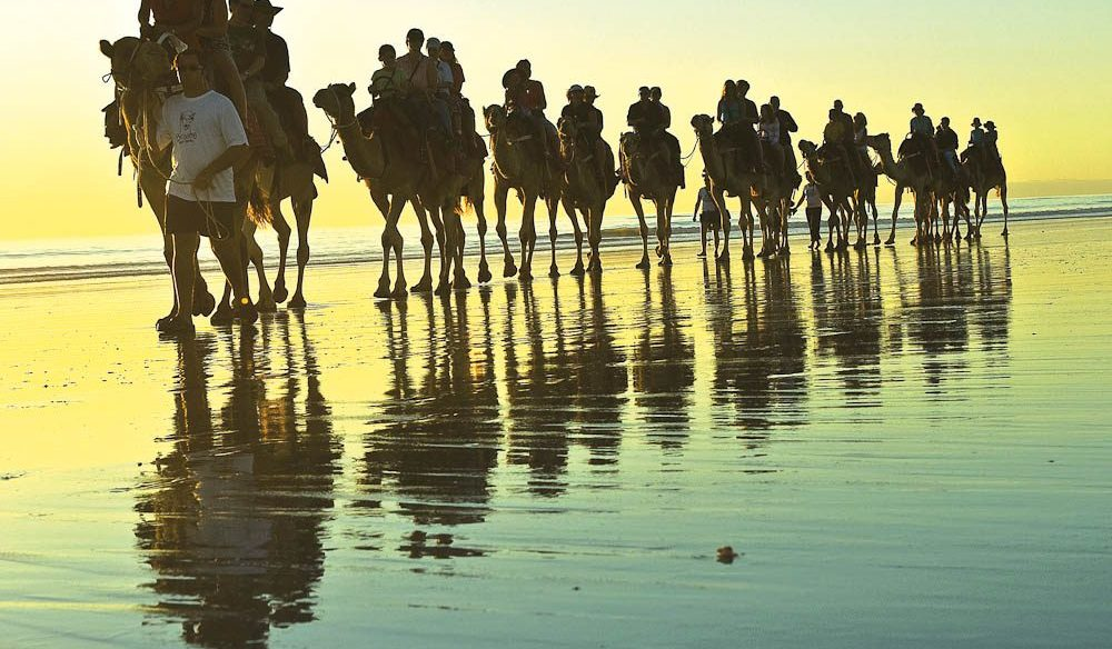 Majestic: Cable Beach, Broome, on camel back at sunset.