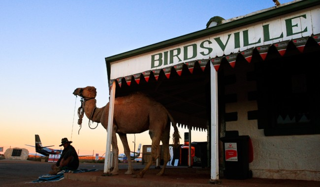 The ultimate outback spectator event: Birdsville Races.