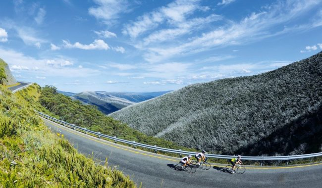 Taking the high road: Great Alpine Road, Victoria's High Country (photo: Mark Watson).
