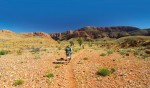 Larapinta Trail, NT: Outback walk with fine food and fireside wine: tick, tick, tick...