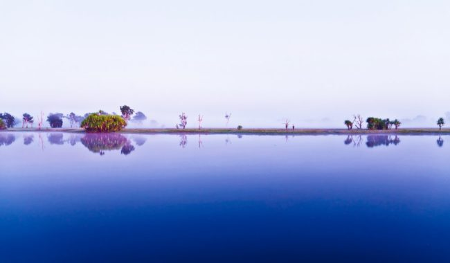 Your shot winner (issue 55): Yellow Water Billabong, Kakadu (Delphine Denans)
