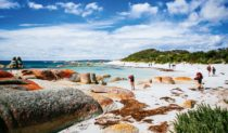 "The Bay of Fires walk, Tasmania - ""charming mix of tired feet and fine wine""."