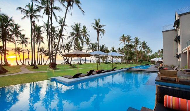 Remaining palm by the pool - Castaways Resort & Spa, Mission Beach, Queensland