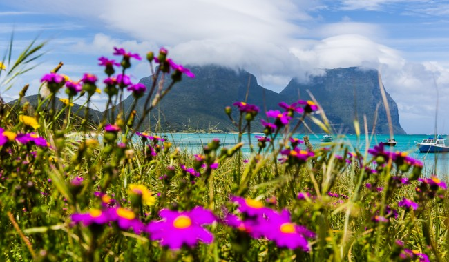 Heavenly Lord Howe, looking over the lagoon, Mt Lidgbird and Mt Gower.