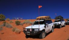 Small groups, big tours with Tri State Safaris