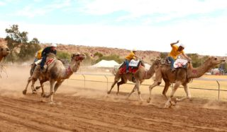 Lasseters Camel Cup Alice Springs finish line