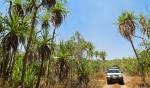 Kakadu 4WD tour