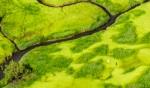 Kakadu wetlands from a scenic flight