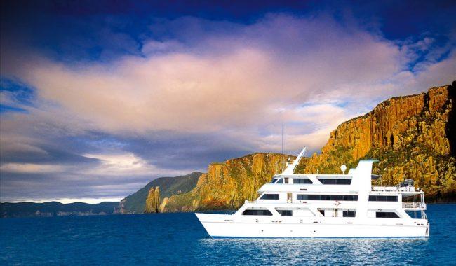 Coral Expeditions 1 off the Tasman Peninsula