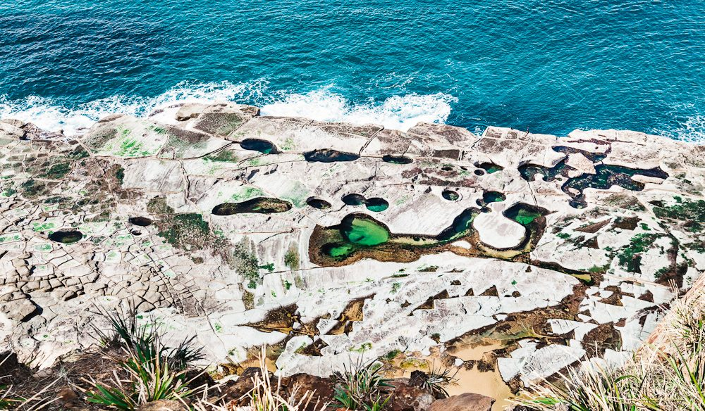 Sydney S All Natural Figure Eight Swimming Pool