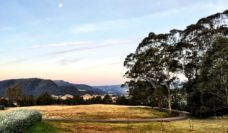 stunning outlook from Kangaroo Valley Olives