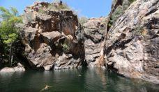 Swim Motor Car Falls Kakadu