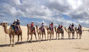 Stockton sand dune safari, near Newcastle.