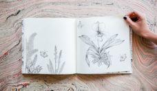 The Wildflowers Grow Picker