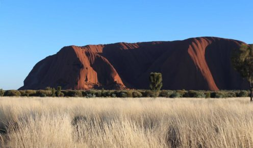 Uluru looms in the distances from most vantage points (photo: Leigh-Ann Pow).