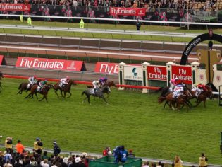 The Melbourne Cup Carnival for beginners - for people that is, not horses...