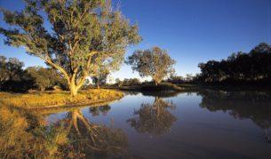 Cullyamurra Waterhole, Cooper Creek, Innamincka, SA