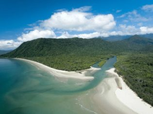 How to See the Daintree Rainforest