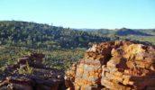 Trephina Nature Park, NT