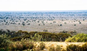 Play on the world's longest golf course: Nullarbor links.