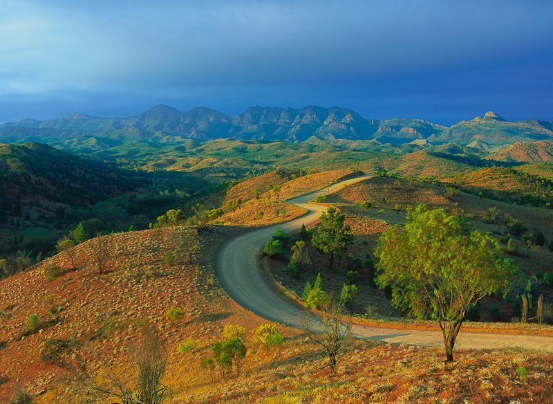 Winding road, Flinders Ranges National Park (Steve Parish)