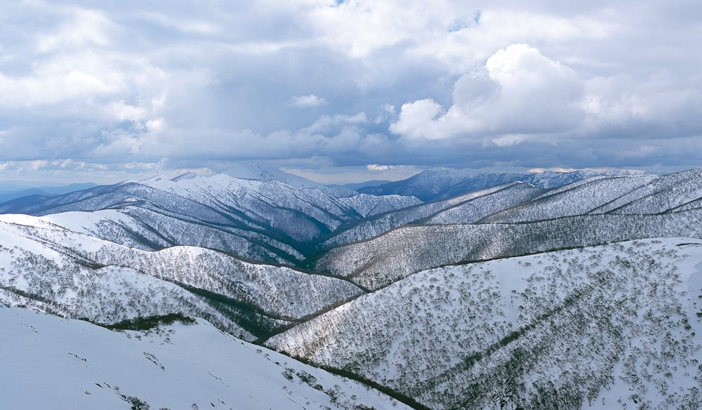 Mount Hotham, Alpine National Park, Victoria (Steve Parish)