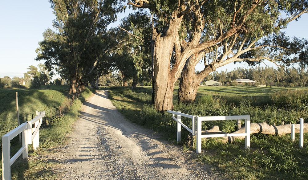 Dirt road, Dubbo, NSW