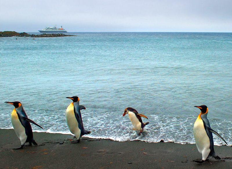 Ken Duncan in Antarctica