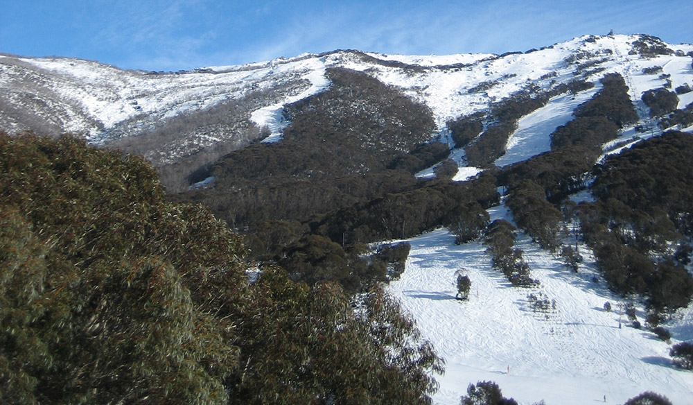 Thredbo ski slopes on a sunny day