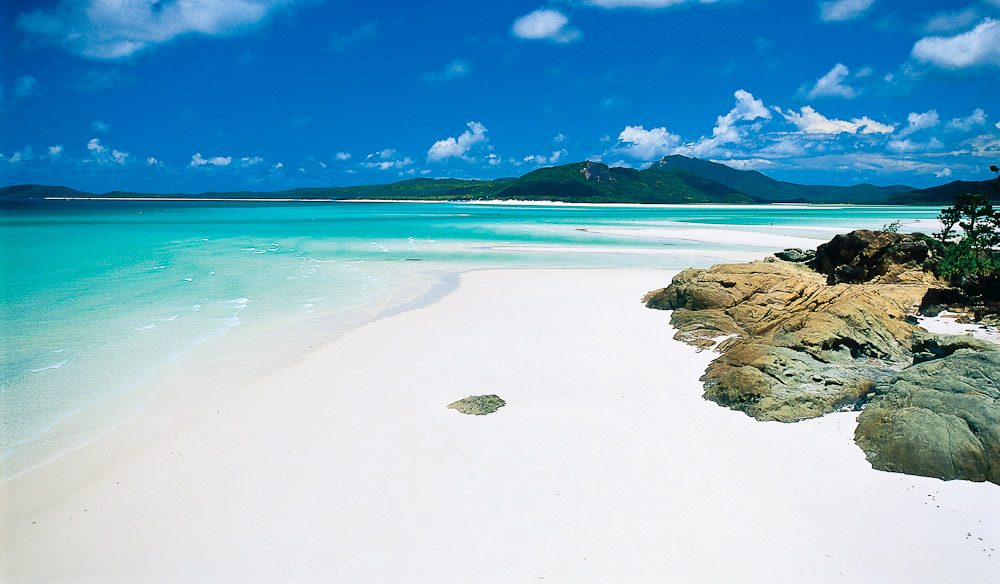 Things To Do In Hamilton Islands