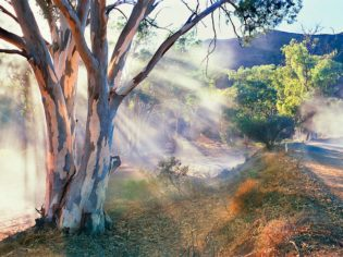 Parachilna Gorge Flinders Ranges