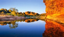 Piccaninny Creek Purnululu National park