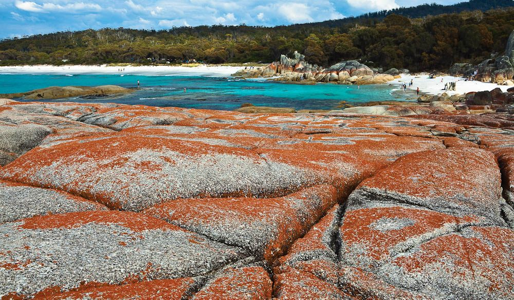 29. Bay of Fires Conservation Area - the Gardens - Image by Tourism Tasmania and Nigel Honey