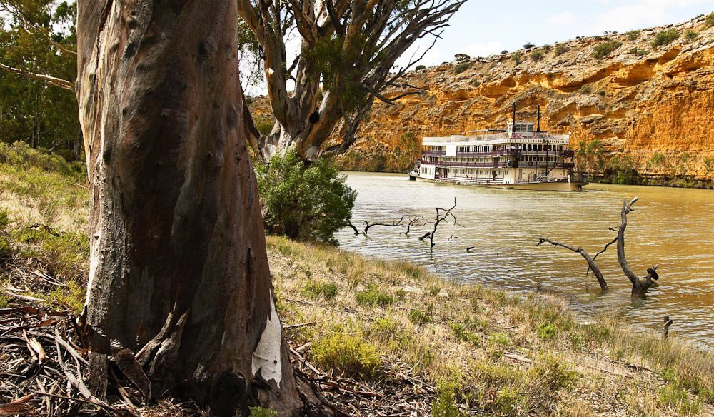 "Towering limestone cliffs, picturesque gorges, riverbanks lined with mallee scrub, red gum forests and century-old stone causeways"" – Brooke Tolar, Captain Cook Cruises"