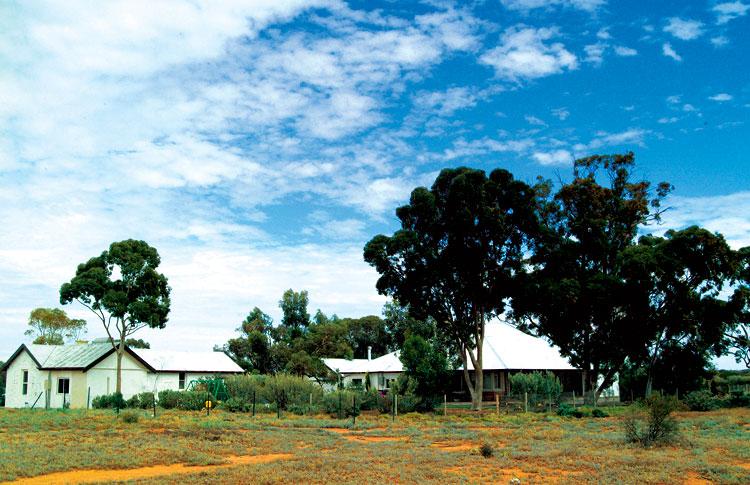 Wirraminna Station, SA.