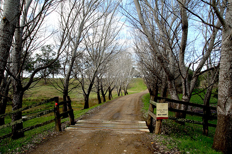 The pretty driveway entrance to Camyr Allyn Wines.