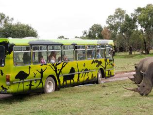 Toddler Tuesdays at Werribee Open Range Zoo