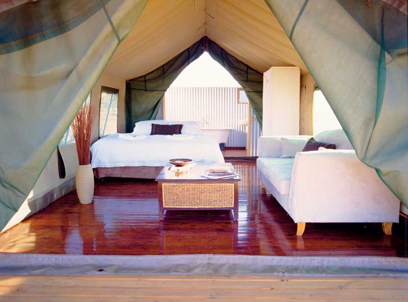 Inside one of the lavish tents at Gunya Titjikala.