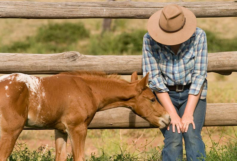 Robyn Rosenfeldt with a young foal at Jillaroo School.