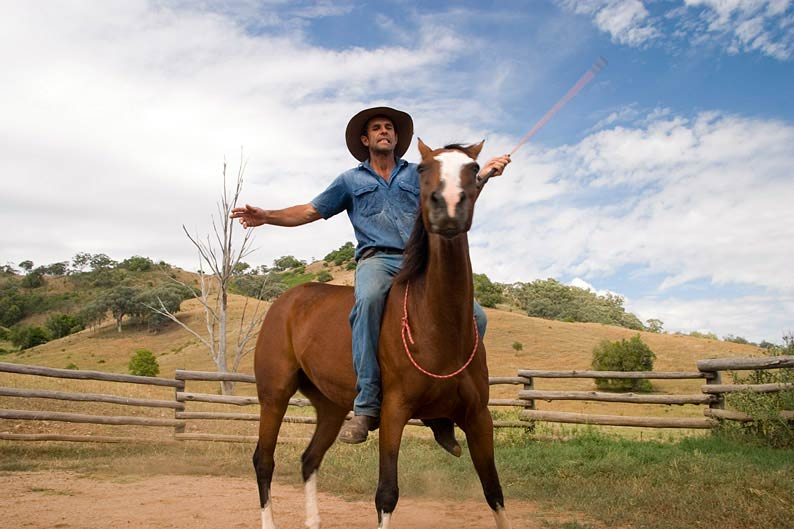 A lesson in natural horsemanship from owner Tim Skerrit.